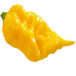 7 Pod Primo Yellow